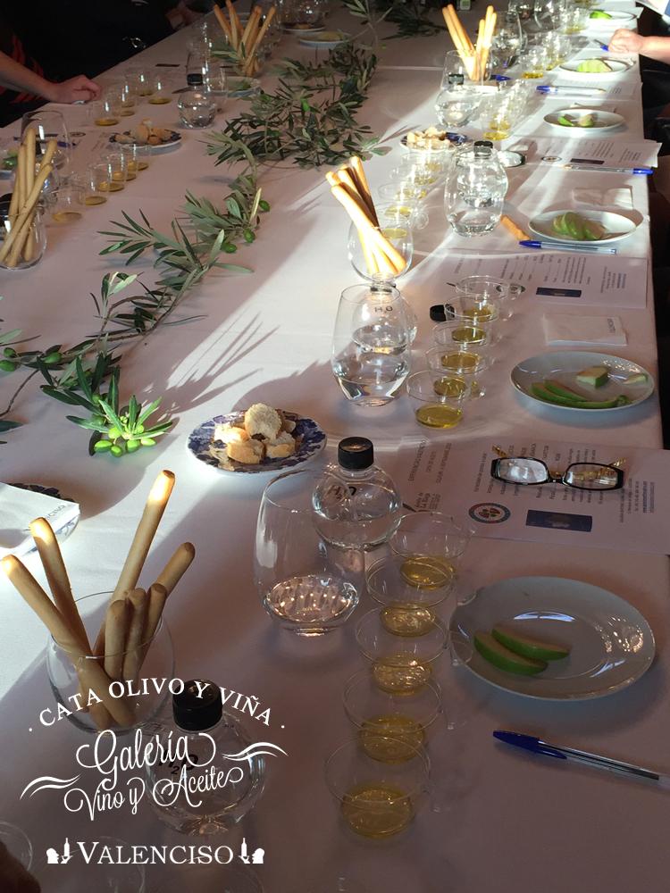Experiencia olivo y viña_011