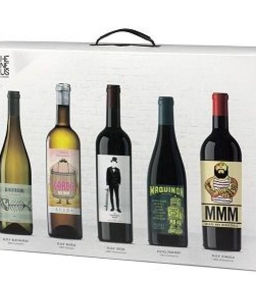 The Wine Guru estuche